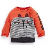 Thời trang trẻ em : Áo First01 - Mèo con