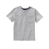 Thời trang trẻ em : Áo thun Gymboree - Ghi Xám
