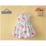 Thời trang trẻ em : Váy Carter V0034
