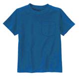 Thời trang trẻ em : Áo thun Gymboree - Màu xanh coban
