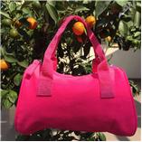 Túi xách hồng Neon